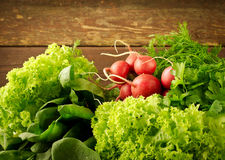 Large bunch of fresh Organic vegetables, radish, spinach, salad and greens on old wooden table, closeup Stock Photos