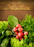 Large bunch of fresh Organic vegetables, radish, spinach, salad and greens on old wooden table, closeup. Dark rustic style Royalty Free Stock Photo