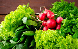 Large bunch of fresh Organic vegetables, radish, spinach, salad and greens on old wooden table, closeup. Dark rustic style Stock Photography