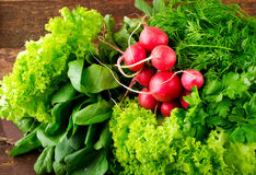 Large bunch of fresh Organic vegetables, radish, spinach, salad and greens on old wooden table, closeup. Dark rustic style Royalty Free Stock Photography