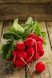 Large bunch of fresh radish. On dark boards Royalty Free Stock Image