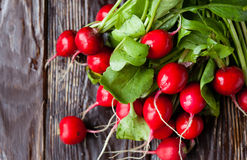 Large bunch of fresh radish on dark boards Royalty Free Stock Photo