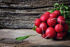 Large bunch of fresh radish. On dark boards , closeup Stock Images