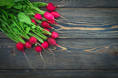 Large bunch of fresh radish on dark boards, closeup Stock Photos