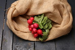 Large bunch of fresh radish on dark boards,. Top view Royalty Free Stock Photo