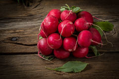 Large bunch of fresh radish. Large bunch of fresh radish on wooden boards, closeup Stock Photography