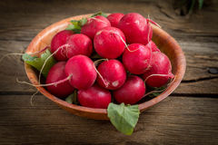 Large bunch of fresh radish. Large bunch of fresh radish on wooden boards, closeup Royalty Free Stock Images