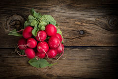 Large bunch of fresh radish. Large bunch of fresh radish on wooden boards, closeup. Top view. Copy space Royalty Free Stock Photography