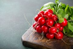 Large bunch of fresh raw radish. Green onions and lettuce. Healthy ingredients for salad on old wooden cutting board with copy space Stock Image