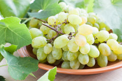 Large bunch of grapes on a ceramic plate Royalty Free Stock Images