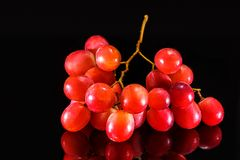 Large bunch of red grapes on black background royalty free stock photography