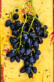 Large bunch of red wine grapes on art painted wooden table. Red Stock Images