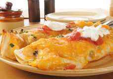Large burritos close up Royalty Free Stock Image