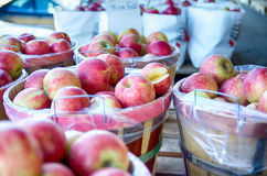 Large bushel basket full of fresh locally grown red apples at lo. Cal farmers market royalty free stock photography