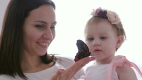 Large butterfly is sitting on graceful hand of young mom, child looks at insect with surprise. Large butterfly is sitting on graceful hand of young mom, child stock video