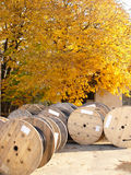 Large cable drum. Under fall tree stock photo