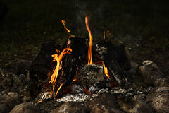Large campfire, bonfire outdoors with burning coals and flames Stock Image