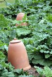 Large ceramic earthenware pot in a vegetable garden Royalty Free Stock Photo