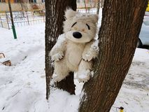 Large children`s toy tree - bear or squirrel. A very large soft toy for a tree - a bear or a squirrel stock image