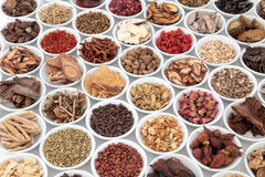 Large Chinese Herbal Medicine Collection Royalty Free Stock Photos