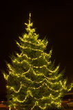 Large christmas tree Stock Image