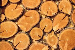 Large circular piece of wood cross section with tree ring texture pattern and cracks. Orange and black circular dark. Large circular piece of wood cross section Royalty Free Stock Photos
