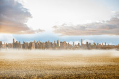 Large city on the horizon Royalty Free Stock Photos
