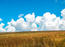Large clouds and field Royalty Free Stock Photography