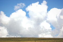 Large clouds and field Royalty Free Stock Photos