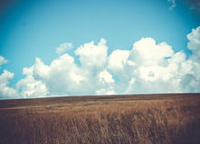 Large clouds and field Royalty Free Stock Photo