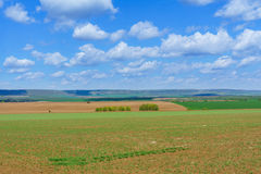 Large clouds over Cultivated field in countryside Royalty Free Stock Photo