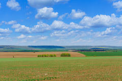 Large clouds over Cultivated field in countryside Royalty Free Stock Image