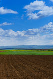 Large clouds over Cultivated field in countryside Stock Photography