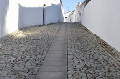 Large Cobblestone path Stock Photography