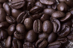Large coffee beans Stock Photo