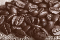 Large coffee beans Royalty Free Stock Photography