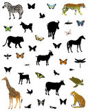 A large collection of animals and butterflies. On a white background Royalty Free Illustration