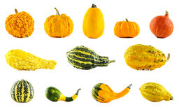 A large collection of different pumpkins Stock Photo