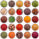 Large collection of different spices and herbs. Isolated on white background stock photo
