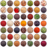Large collection of different spices and herbs Royalty Free Stock Image