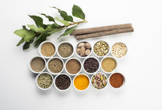 Large collection of different spices and herbs isolated on white Royalty Free Stock Images