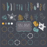 Large collection of elements for decoration. Large collection of items for decoration.It includes branches, wreaths, flowers and leaves. Hand drawing. Dark gray Stock Image