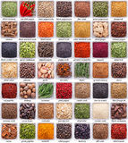 Large Collection Of Different Spices And Herbs Stock Photography