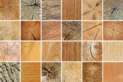 Large collection of various wooden textures. Royalty Free Stock Photo