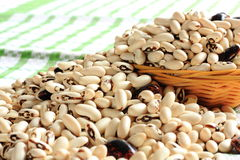 Large colorful beans Stock Photography