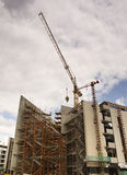 Large constuction site. Cranes looming over a large construction site Royalty Free Stock Photo
