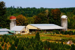 Large Country farm Stock Photo