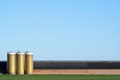 Large cowshed Stock Images