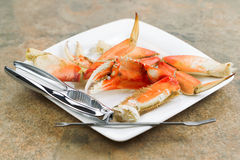 Large Crab Claw freshly Cooked Stock Photos