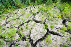 Large cracks in parched earth Royalty Free Stock Images